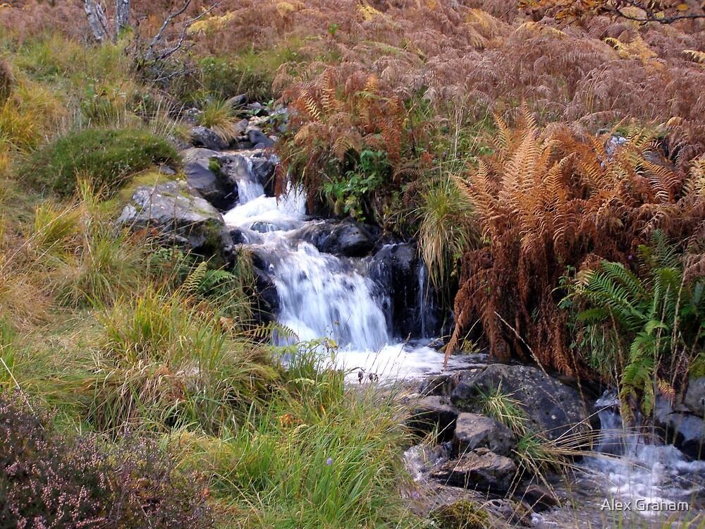 Waterfall, Glen Shiel by Alex Graham