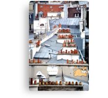 Cat on a Paris Roof Canvas Print