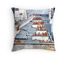 Cat on a Paris Roof Throw Pillow