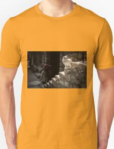 White Cat sitting on Steps T-Shirt