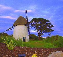 Windmill at Tacumshane by brianboyce50
