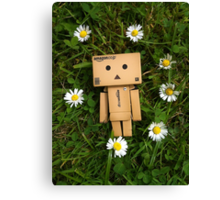 Danbo and daisies, what more could you ask for? Canvas Print