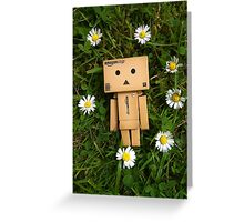 Danbo and daisies, what more could you ask for? Greeting Card