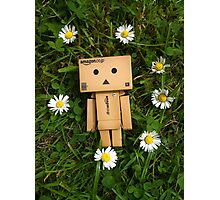 Danbo and daisies, what more could you ask for? Photographic Print
