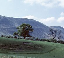 Arthurs Pike  Lake District England 198405230011 by Fred Mitchell