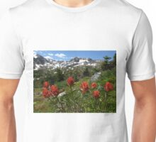 Indian paintbrush Unisex T-Shirt