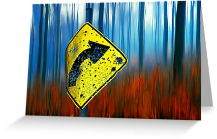 Road Sign 2 by Hans Kawitzki