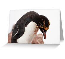 "Macaroni Penguin ~ ""...at the end of a hard day..."" Greeting Card"