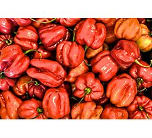 Red Habanero Peppers Photographic Print