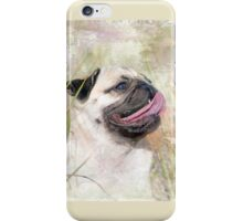 Pug Happiness iPhone Case/Skin