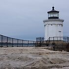 Bug Light  lighthouse by Anne Scantlebury