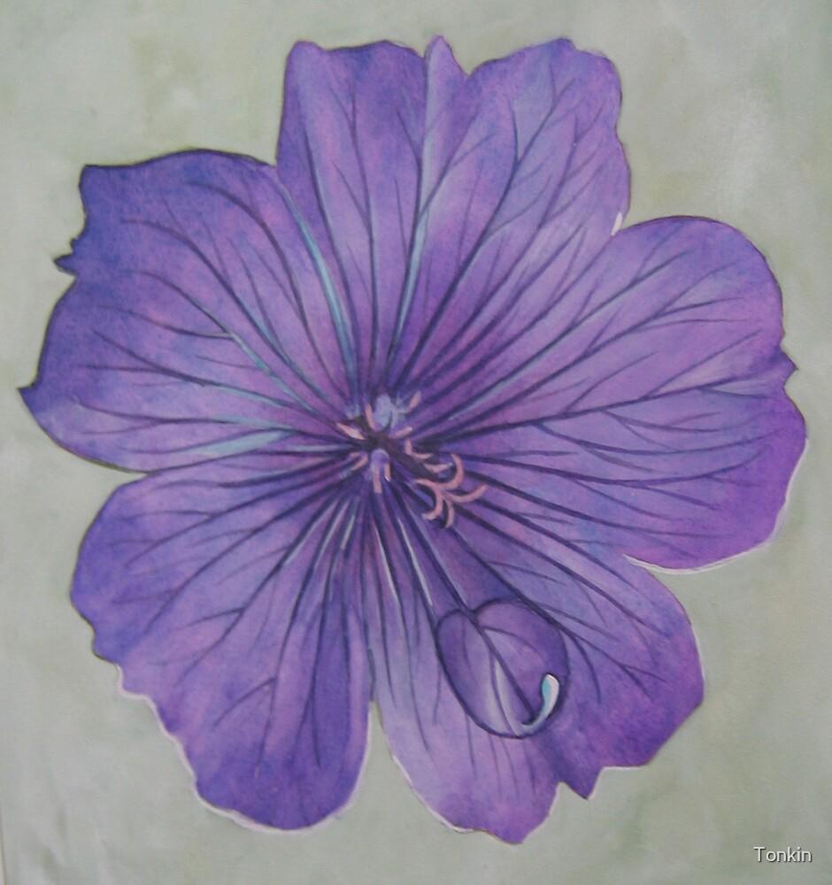 raindrop on flower by Tonkin
