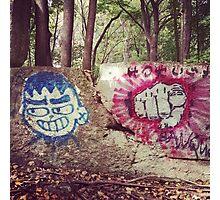 Broken Wall in Woods Photographic Print