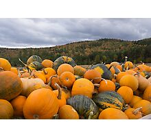 Pumpkins in fall Photographic Print