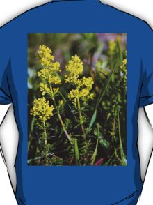 Galium Verum (Lady's Bedstraw), Inishmore, Aran Islands T-Shirt