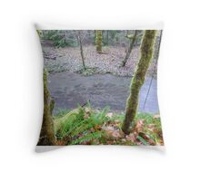 Salmon, Cowlitz River side channel Throw Pillow