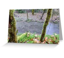 Salmon, Cowlitz River side channel Greeting Card