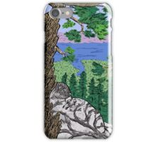 View from Maggies Peaks iPhone Case/Skin
