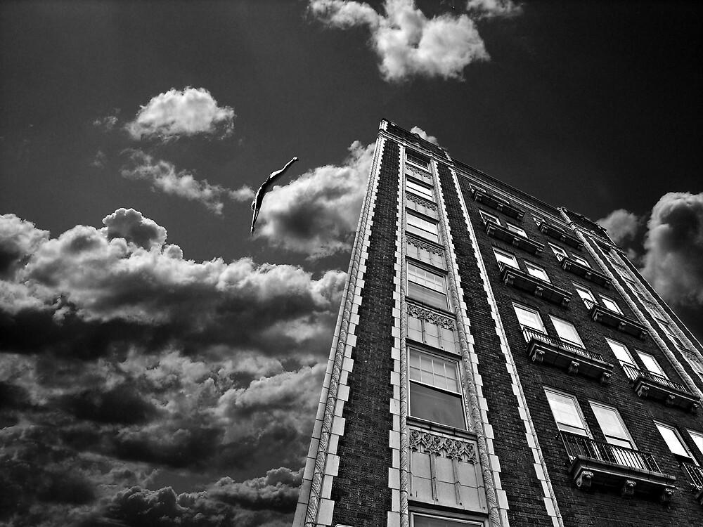 Adrenalin..... by Daniela Reynoso Orozco