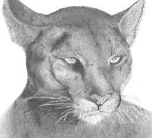 Puma by ArtGautreaux