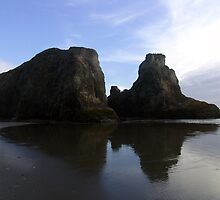 Sea Stacks by Terry Shumaker