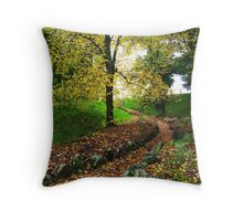 Crunch This Way... Throw Pillow