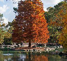 Autumn in Auburn. by GW-FotoWerx