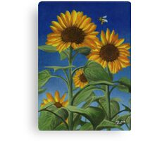 Sunny Bumble Canvas Print