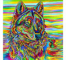 Psychedelic Wolf Photographic Print