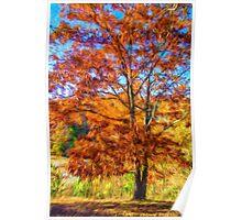 Splendor Of Autumn Poster
