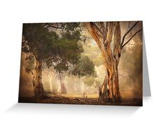 Gum Trees - Anakie Greeting Card