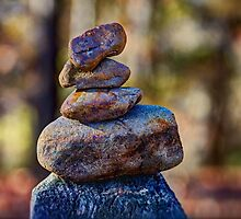 Balancing Act by Barry  Jones