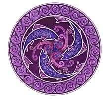 Purple Fish Spiral by Rebecca Wang