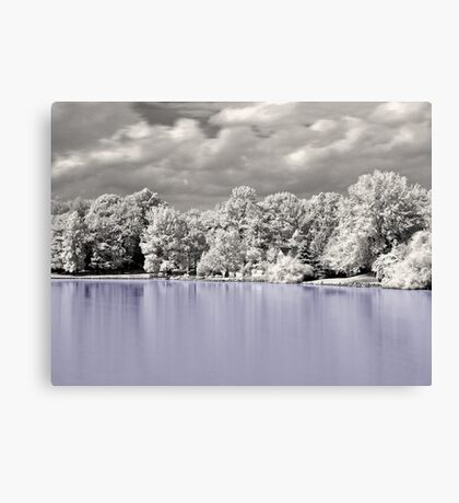 House On The Lake  Canvas Print