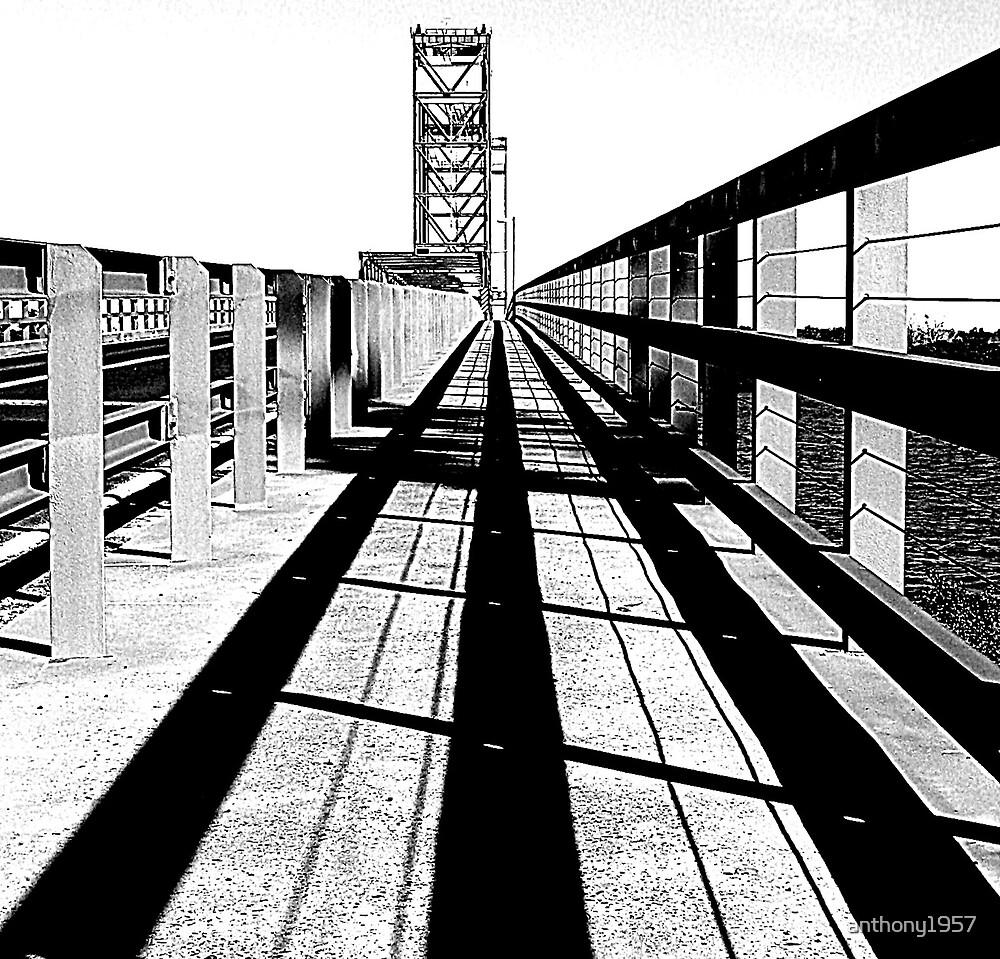 Bridge Study by anthony1957