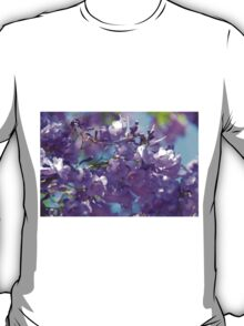 Spring Jacaranda Blossoms T-Shirt
