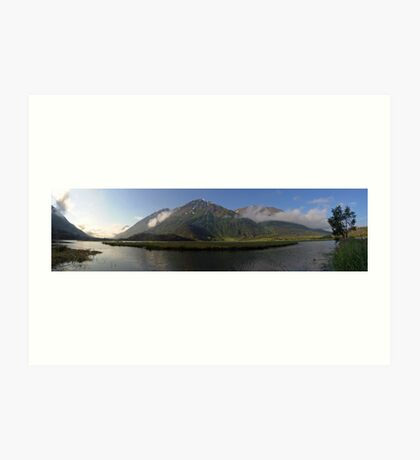 Tern Lake Art Print