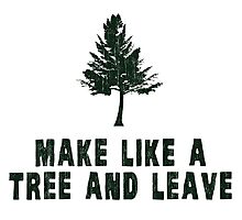 Make Like a Tree and Leave Photographic Print