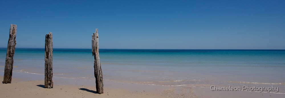 Old Jetty at Pt Willunga by Chameleon Photography