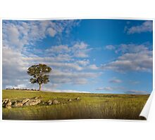 Peace in the Pasture Poster