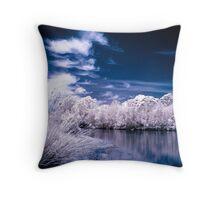 Waterfront Views Throw Pillow