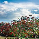 Red Tree by Candice84