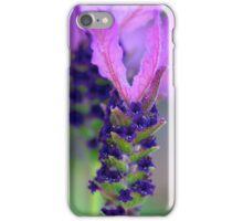 Sweet Lavender iPhone Case/Skin