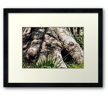 Tingle Roots Framed Print