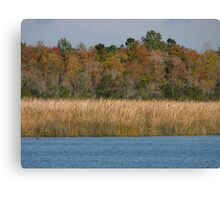 Fall is beautiful here Canvas Print