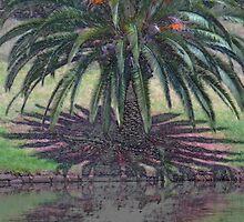 River Palm. by GW-FotoWerx