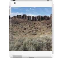 Vantage Washington Rock Pillars iPad Case/Skin