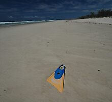 Lost Flipper, Kingscliff Beach 2008 by muz2142