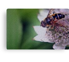 Macro Drone Flower B Canvas Print