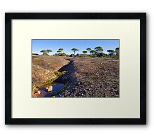 Water on Earth Framed Print